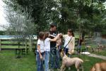 Cachorros de Hans y Diva